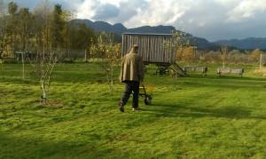 orchard.92