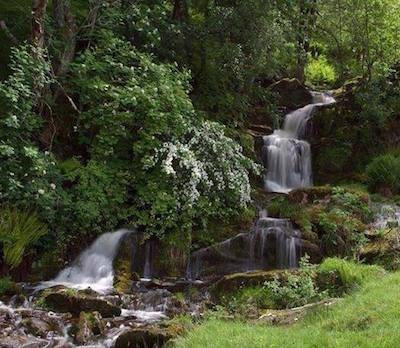 Waterfall Glen Artney