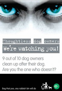 dogposter_3115620c