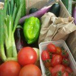 Tomnah'a Market Garden