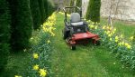 BCH Garden Services – Grass Cutting and Garden Maintenance